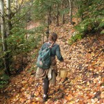 In search of wild mushrooms in the forest. Summer and autumn are the best months for food gatherers in the area