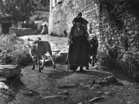 Kipoi village in the Zagori area, Epirus