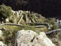 Vradeto traditional stone path in Epirus at the National Park of Vikos Aoos