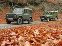 Out for a drive in the forest during late autumn, Pindus National park
