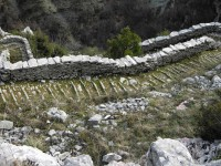 The stone path that connects the viollages Vradeto and Kapesovo in Epirus