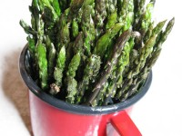 Wild asparagus collected in April in the National Park of Pindus, Greece