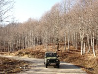 Driving through Karantere forest in winter