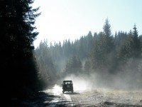 Driving on a very cold morning through the Picea abies trees of Karantere forest in Drama, Greece