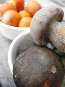 Autumn mushrooms amanita caesarea and boletus aereus from the forests of Zagori