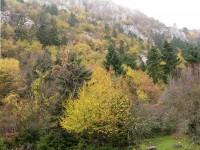 Orliakas mountain in autumn, Grevena, Greece