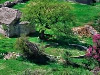 Agios Athanasios in Aristi village