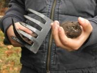 Truffle hunting in Eastern Zagori, Ioannina