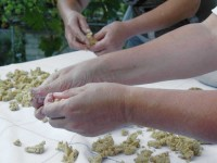 and crumbling it into pieces in order for the sun to dry them | making trahana in zagori