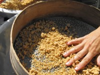 so that they can fit through the holes of the sieve | making trahana in zagori