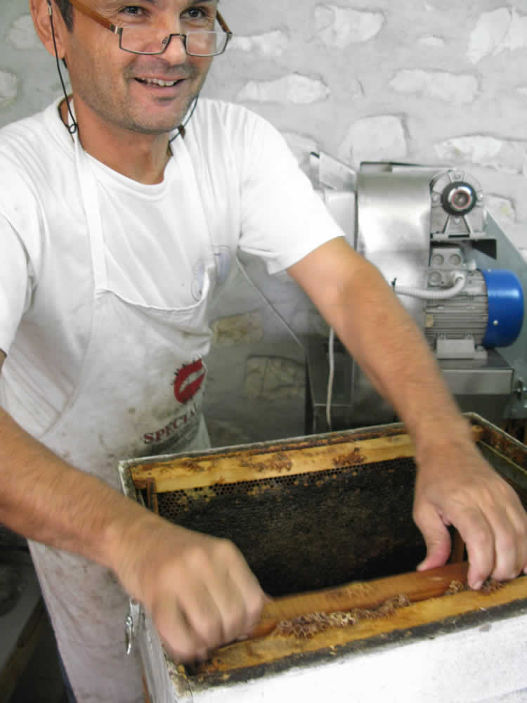 UNCAPPING - slicing off the cappings from the honeycombs | beehouse tsepelovo, zagorohoria, greece