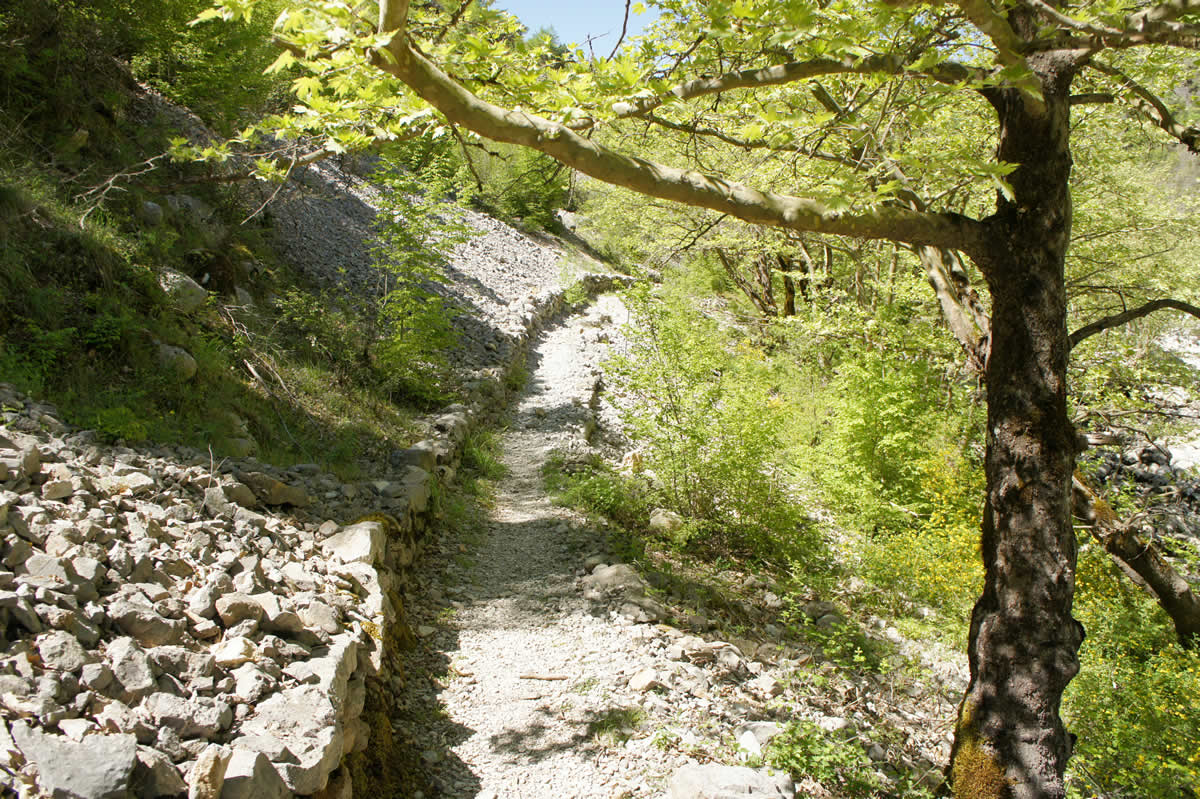 This part of the path is made of rocks that have fallen from the sides of Vikos canyon