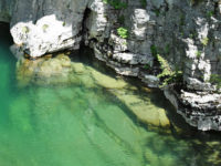 Crystal clear water of Voidomatis river in Vikos Aoos Geopark