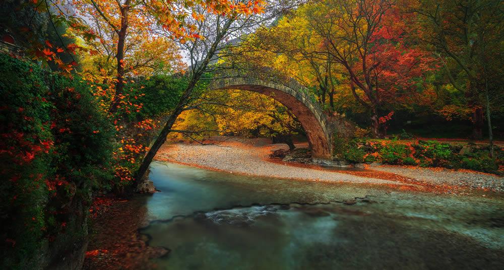 Old stone arch bridge over Voidomatis river | Alexandros Malapetsas